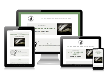 Clwyd Badger Group Website